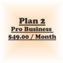 Plan 2-Pro Business (Billed @ $49/Mo for 12 Month