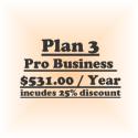 Plan 2-Pro Business (Billed @ $ 441/yr